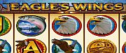eagles-wings-1